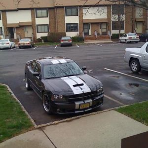 Silver Rally and Rockerpanel Stripes